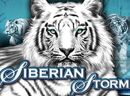 Party Casino Slot Siberian Storm