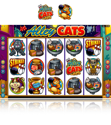 Microgaming Alley Cats Spiel