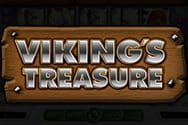 Viking`s Treasure
