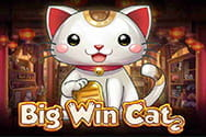 Big Win Cat Slot von Play'n GO