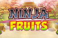 Ninja Fruits Slot von Play'n GO