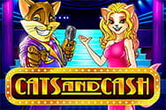 Cats and Cash Slot von Play'n GO