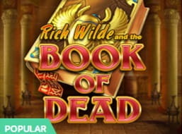 The Book of Dead slot from Play'n GO