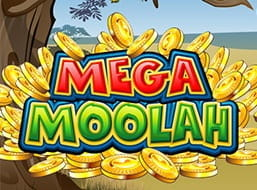 The Mega Moolah slot from Microgaming