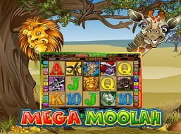 Record Breaking Jackpot Slot Mega Moolah