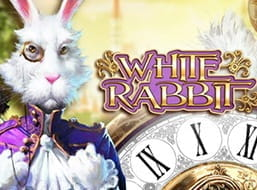 The slot White Rabbit from Big Time Gaming