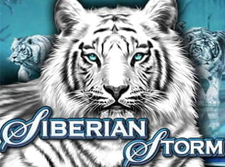 Siberian Storm Slot by IGT