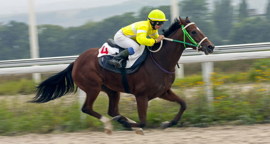 Man Squatting on a Horse in a Race