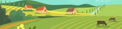 Big Farm and Frields
