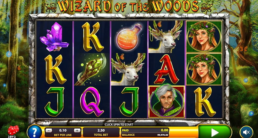 Magic Slots Wizard of the Woods