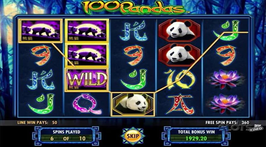 Bonus Double Down Casino - How To Withdraw Winnings Made In Slot Machine