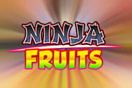 Ninja Fruits slot game preview
