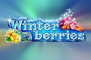 Preview of the slot game Winterberries