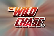 The Wild Chase game logo