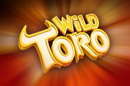 Preview of Wild Toro slot