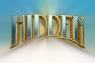 Preview of Hidden slot