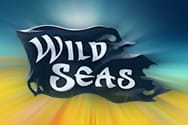 Preview of Wild Seas slot