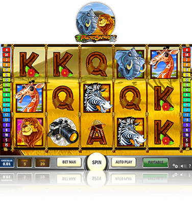 In-game view of Photo Safari Slot