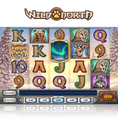 In-game view of Wild North slot