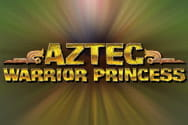 Aztec Warrior Princess slot game preview
