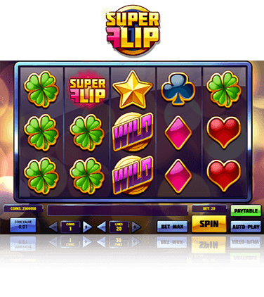 In-game view of Super Flip game