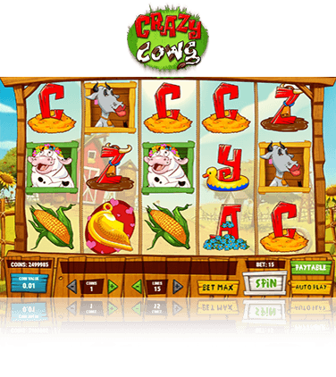 In-game view of Crazy Cows slot