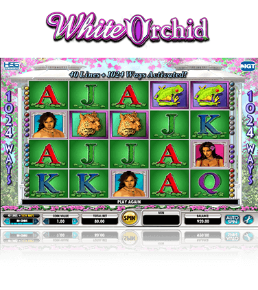 White Orchid Game
