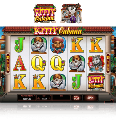 Kitty Cabana Game